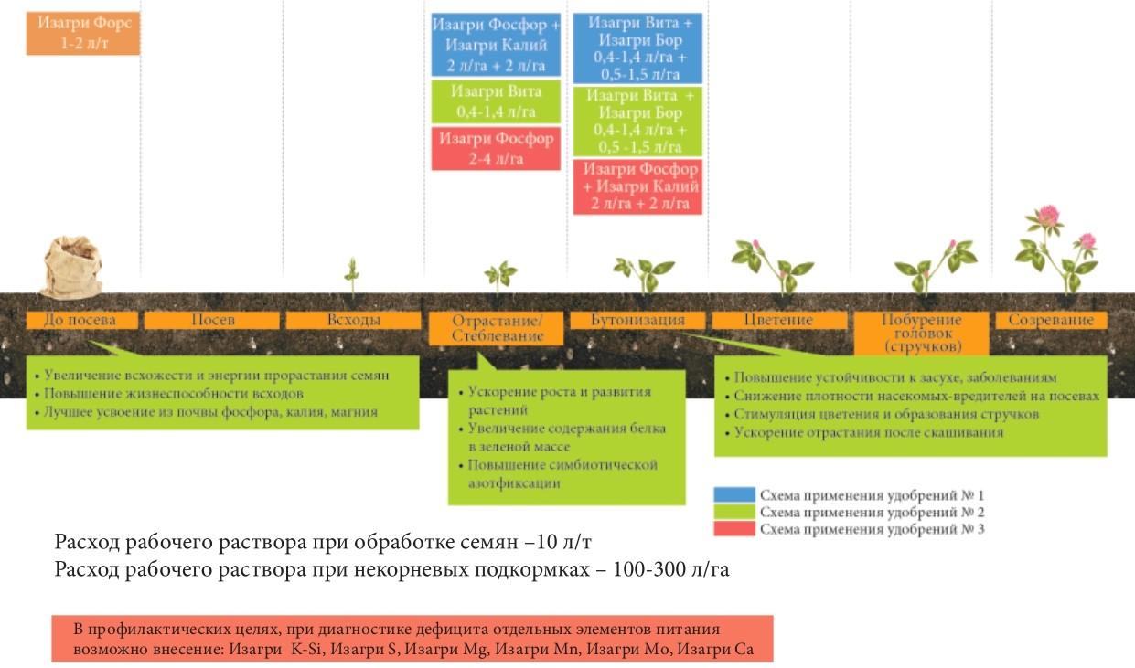 Программа питания для многолетних бобовых трав