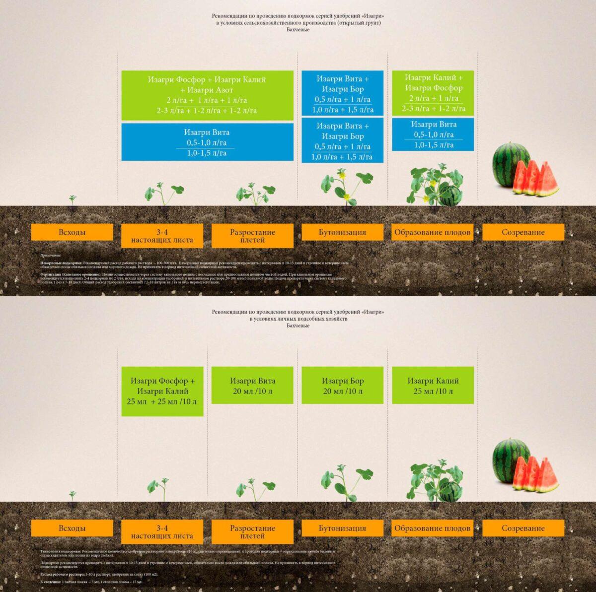Программа питания для бахчевых