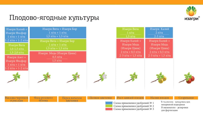 Программа питания для плодово-ягодных