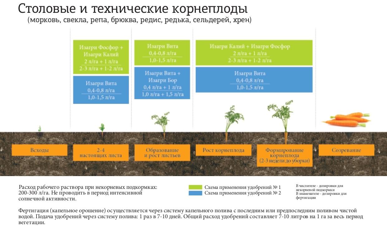 Программа питания для столовых и технических корнеплодов
